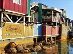 Paradise Pier. (thnewblack) Tags: lg v30 android smartphone disneyland california outdoors sunny 16mp f16 snapseed hdr aicam californiaadventure