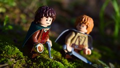 """What shall we do, Mister Frodo?"" (Alternate) (RagingPhotography) Tags: lego lord rings middle earth middleearth fantasy fantastical mister frodo baggins sam samwise gamgee outside outdoors outdoor bright shine shiny sunny green greenery grass pretty colorful colors color ragingphotography"