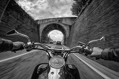 Get your motor runnin' (fil.nove) Tags: chieri canon60d actionphoto samyang8mm samyang fisheye 8mmfisheye blackandwhite biancoenero monocromo motorcycle transportation retrostyled oldfashioned outdoors men riding street driving travel road speed biker lifestyles monochrome motociclistica moto bike motorcycles motionblur movimento velocità hondashadow honda custom chopper bobber goprostyle