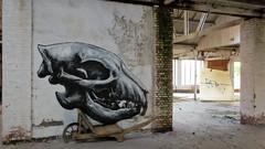 ROA / Gent regio - 6 mei 2018 (Ferdinand 'Ferre' Feys) Tags: gent ghent gand belgium belgique belgië streetart artdelarue graffitiart graffiti graff urbanart urbanarte arteurbano ferdinandfeys roa