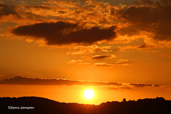 Sunset (Fabrice H. - Photography) Tags: sunsets sun sunset sunny zonsondergang clouds sky nature beautiful wood orange evening dark canon canon7dmk2 canon7dmkii ronse vlaanderen vlaamseardennen oostvlaanderen belgium