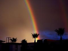 All Is Not Lost (R. Kurosawa) Tags: rainbow palm rain double light clouds