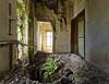 Decay (david_drei) Tags: lostplace abandoned farn grün