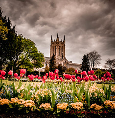 Day 116. (lizzieisdizzy) Tags: church abbey garden gardens flowers tulips saint edmunds burystedmunds suffolk religious cloudyssy sky clouds cloudy publicgardens howiemarsh