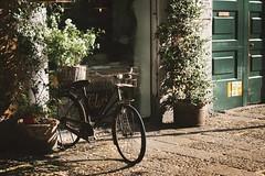 Bike (Shahrazad_84) Tags: milan italy bike warm bycicle mood street vintage
