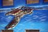 Sea turtle street art, Corpus Christi, Tx (Frank G Cornish) Tags: streetart mural corpuschristitx blue seaturtle