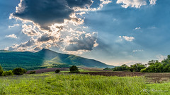 Sun rays at Smedov Peak (Milen Mladenov) Tags: 2018 landscape smedovpeak smedovets varbovchets clouds forest grass green hill latespring light mountain nature ray rays sclouds sky spring summer sun