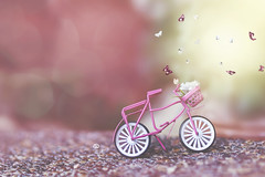 little girl kisses (rockinmonique) Tags: toy bike bicycle pink butterflies sweet pretty green white whimsical composite moniquewphotography canon canont6s tamron tamron45mm copyright2018moniquewphotography