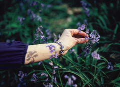 Purple (spiridono) Tags: bluebell flower fiorest violet purple color holding hand moody film medium format mamiya velvia spring belgium