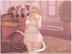 ♡ Kittia Cat ♡ (Lili [My Fashionista Heart]) Tags: catwa maitreya thesugargarden unicult ayashi okkbye unnie rustrepublic cosmopolitan whimsical romp sweetthing pkc halfdeer ama labaguette cute kawaii secondlife
