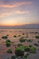 in the evening (efpiem72) Tags: canoneos700d calm peace relax magicmoment atmosfera atmosphere stones scones sand beach green image canoneos eos700d canon evening sunset italy italia castelvolturno campania villaggiocoppola
