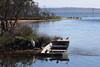 Tuggerah Lake, The Entrance (RossCunningham183) Tags: theentrance nsw australia terilbahisland tuggerahlake egret silvergull pelican cormorant duck pacificblackduck reflection boat tinnie island birdsanctuary