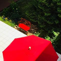赤いパラソルとベンチ (eyawlk60) Tags: parasol bench red green spring summer 初夏 春 木 緑 赤い パラソル ベンチ garden flickraward