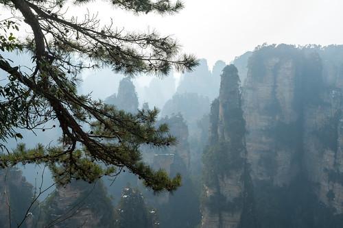 Wild Views - Zhangjiajie National Park