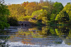 Spring Or Fall (djrocks66) Tags: spring fall nature landscape waterscape outdoors wildlife people trees sunset sunrise lake pond ny long island canon 5dmk4 color water swans cygnets ngc