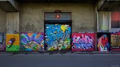IMGP9772 Colors on the railway walls (Claudio e Lucia Images around the world) Tags: murales graffiti streetart milano vialemonza ferrovia via pontano milanese pentax pentaxk3ii sigma sigma1020 pittura face faccia murale art viapadova padova
