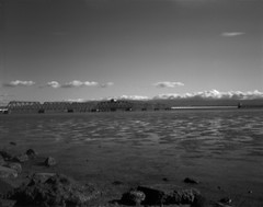 Dumbarton Rail Bridge Swing Section (tuzakey) Tags: worldwidepinholephotographyday film 4x5 tmax100 red25 blackwhite blackandwhite pinhole bridge diypinhole wppd2018 rodinal1100 standdeveloped f280 f5