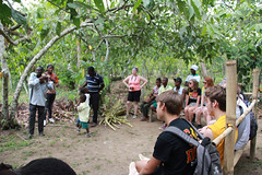 BHS SCV18IMG_9291 (partnerschoolsworldwide) Tags: food forest culture trips travel cocoa beans sugarcane africa ghana