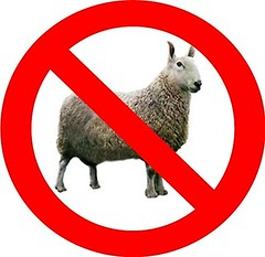 """Stop Being """"Sheep"""" Think For Youself, Support What's Right, Not What Everybody Else Thinks #Dj2020 (DJTWENTY20) Tags: ifttt instagram stop being sheep think for youself support whats right not what everybody else thinks dj2020"""