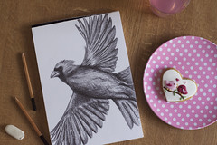 Cardinal Bird in Flight (Girl With Butterfly Wings) Tags: cardinal sketch drawing messy pencil sketching flatlay snack biscuit gingerbread icing cute birds drink eraser art