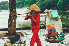 Hanoi city streets in Vietnam (Paul D'Ambra - Australia) Tags: lalentephotography asia bestcitiesinasia city colourfulcitystreets hanoi pauldambra placestovisitinasia streetphotography travel vietnam hànội