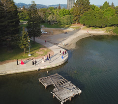Lake Merritt (samayoukodomo) Tags: drone dronephotography aerialview aerialphotography takingthedroneouttogethigh quadcopter djimavicpro mavicpro dronepointofview birdseyeview droneview aerial