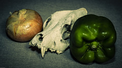 Skull with Pepper and Onion (N.the.Kudzu) Tags: tabletop stilllife skull onion pepper primelens canondslr canoneflens lightroom flash