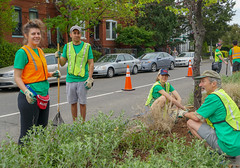 2018.05.06 Vermont Avenue, NW Garden - Work Party, Washington, DC USA 01801