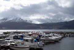 Hamneroa -|- Marina (erlingsi) Tags: harbour marina volda folkestad fjord noreg sunnmøre north molo
