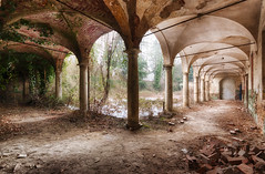 """Fresh she's so fresh..."" (ElfeMarie) Tags: cloitre cloister past abandoned abandonné architecture arcades arches arcs abandonnée arbre vegetation pierres stones creepy colors couleurs canon 70d decay derelict decayed décrepit dust decaying exploration explorationurbaine extérieur empty forgotten glow green garden hdr inside interieur italia italie italy imagination lost light lumière lueur luminescence marilynek neglected nature oublié oubliée outside old poussiere palais palace peaceful palazzo ruine ruins ruines texture urbex urbanexploration"