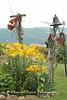 Benton Daylilly Farm (43) (Framemaker 2014) Tags: benton daylily farm garden flowers columbia county pennsylvania endless mountains united states america