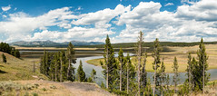 Lazy River Panorama (Ron Drew) Tags: nikon d800 yellowstonenationalpark nationalpark yellowstoneriver river haydenvalley mountains valley forest wyoming clouds americanwest usa panorama stitched summer trees hills wildlife bison landscape outdoors