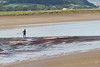 Nith_BoreSUP_0697 (yepabroad) Tags: nith bore pororoca mascaret scotland dumfries glencaple malouine inshore rescue paddlesurf sup bird