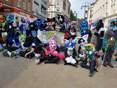 """Leeds furmeet May2018 • <a style=""""font-size:0.8em;"""" href=""""http://www.flickr.com/photos/97271265@N08/41348957995/"""" target=""""_blank"""">View on Flickr</a>"""
