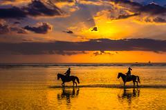 Horse riding at the sunset (Masa_N) Tags: sunset summer beach landscape sunrays seashore dusk gilitrawangan island clouds horse people indonesia seaside sea pemenang nusatenggarabarat インドネシア id