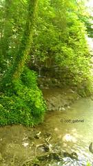 Maarata nature park, Bulgaria (cod_gabriel) Tags: bulgaria maarata naturepark parcnatural woods forest deciduous foioase deciduousforest padure pădure paduredefoioase păduredefoioase