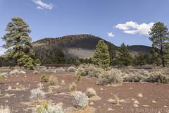 SedonaVacation_May2018-3199 (RobBixbyPhotography) Tags: arizona flagstaff sedona sunsetcrater vacation nationalmonument volcano travel
