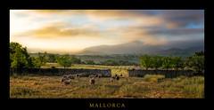 Mallorca 2 (Rukiber) Tags: mallorca spanien spain landschaft landscape urlaub holiday christian kirsch rukiber d750 natur nikon