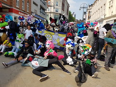 """Leeds furmeet May2018 • <a style=""""font-size:0.8em;"""" href=""""http://www.flickr.com/photos/97271265@N08/41528707444/"""" target=""""_blank"""">View on Flickr</a>"""