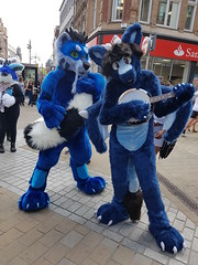 """Leeds furmeet May2018 • <a style=""""font-size:0.8em;"""" href=""""http://www.flickr.com/photos/97271265@N08/41528714474/"""" target=""""_blank"""">View on Flickr</a>"""