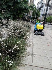 People Space Sweeper (Seattle Department of Transportation) Tags: seattle sdot transportation donghochang sweeper downtown people space plants dsa