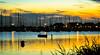 Abendstimmung in Rerik (Dieter Gora) Tags: reriksunsetmeckpomm g5xcanonmecklenburgvorpommern mcpom mcpomm ship sun cormorant dietergora 2016 marmeladisierung