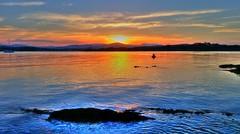 The sun goes down across the bay ('phone camera) (elphweb) Tags: hdr highdynamicrange nsw australia water bay creek sea ocean sunset sun light glow sky skies blue orange reflections