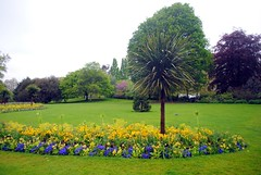 Green spaces in Hyde Park (zawtowers) Tags: jubilee greenway section 1 walk saturday 28th april 2018 cloudy damp buckinghampalacetolittlevenice amble stroll walking exploring london urban green space flower bed trees path hyde park