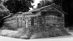 DMAFR Day 2 (33) (momentspause) Tags: mississippi house abandoned roadtrip blackandwhite bw blackandwhitephotography canon5dmkiii canonef50mmf18 niftyfifty