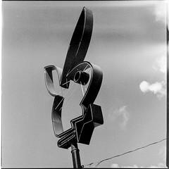 Passing Through_路過_2016.02_10 (KT Shiue) Tags: bunny rabbit playboy sculpture contemporary discrict dallas tx texas kodak t max 100 film hasselblad 503 cw