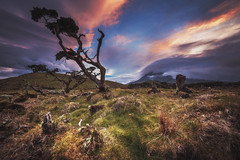 Azores - Pico Sunset Madness (030mm-photography) Tags: rot azoren azores insel portugal archipel pico picoisland picovulkan vulkan stratovulkan spiegelung see sonnenaufgang sunrise alpenglühen alpenglow reise travel landscape nature natur landfschaft