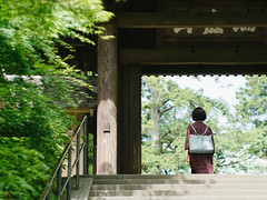 temple (osanpo_traveller) Tags: japan kamakura engakuji temple olympus penf oldlens jupiter jupiter9 85mm 85mmf2