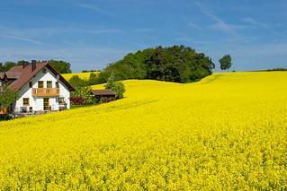 Niederbayern ist schön!