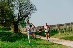 trail_delle_rocche_roero_2018_0384 (Ecomuseo delle Rocche del Roero) Tags: aprile ecomuseodellerocche edizione montà rocche trail uisp trailrunning roero